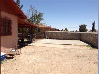 EasyRoommate US - Cozy home for rent - Central El Paso, El Paso - $800
