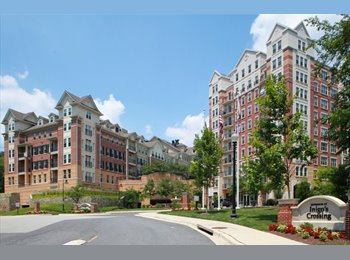EasyRoommate US - 1 BR/1 BATH in Jefferson at Inigos Crossing (North - Bethesda, Other-Maryland - $1050
