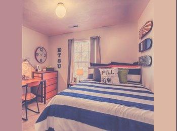 EasyRoommate US - 1 bedroom 1 bath 2 month lease!!!! - Johnson City, Johnson City - $399