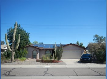 Half a House for Rent in Ahwatukee