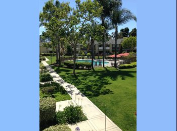 EasyRoommate US - Room in beautiful complex for working professional - Costa Mesa, Orange County - $800