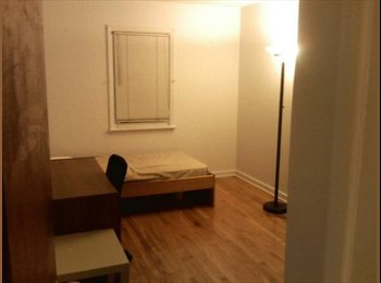 Great Room For Rent