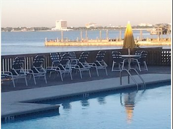 Roommate opportunity in Seabrook.