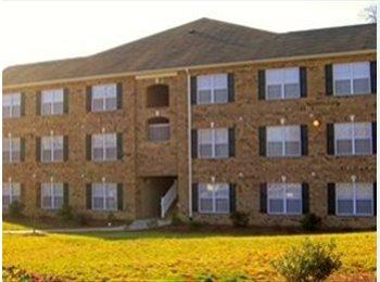 EasyRoommate US - 1br - Room for Rent - Greensboro, Greensboro - $395