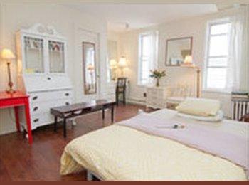EasyRoommate US - GREAT AREA, NICE APT - COUCHBED IN LIVING ROOM - Gowanus, New York City - $850