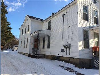 EasyRoommate US - 2 Bedroom  apartment 1145 Lees St - Utica, Other-New York - $650
