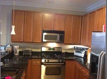 EasyRoommate US - Desperate need for a roomate april 1 - Logan Square, Chicago - $1000