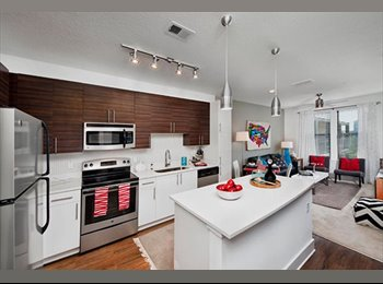EasyRoommate US - Young Professional - New, Luxury Apartment - Downtown Tampa, Tampa - $800