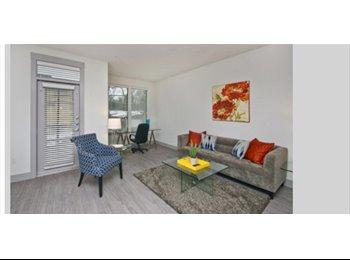 EasyRoommate US - 1 bed 1 bath furnished Apartment  - Oak Lawn, Dallas - $2900