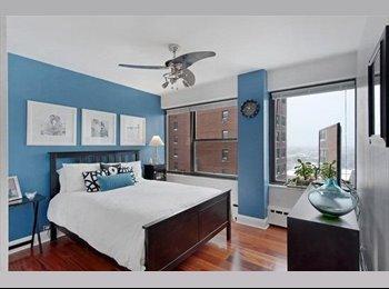 Seeking Subletter For Lakeshore Drive Apartment