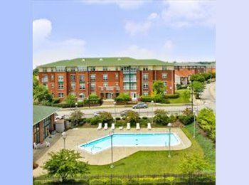 EasyRoommate US - Looking for a 4th Roommate - East Allegheny, Pittsburgh - $360