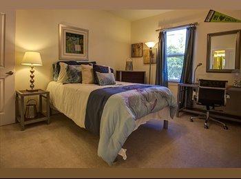 1 bedroom apt. near Emory University