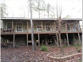 Roommate wanted. Cabin in the woods