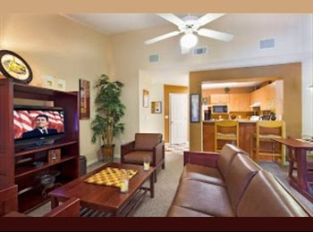 EasyRoommate US - 1/1 in 3/3 for Summer rent at Campus Lodge - Gainesville, Gainesville - $499