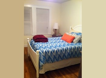 EasyRoommate US - CHESTNUTHILL!!! ONLY $700, WALKING DISTANCE TO T - Brighton, Boston - $700