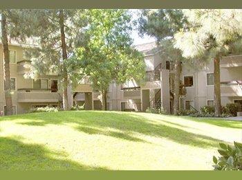 EasyRoommate US - Room available in Sunnyvale - San Jose Area, San Jose Area - $1100
