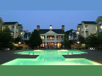 EasyRoommate US - Luxury 2 Bedroom Apt w/Private Bathroom - Atlanta, Atlanta - $600