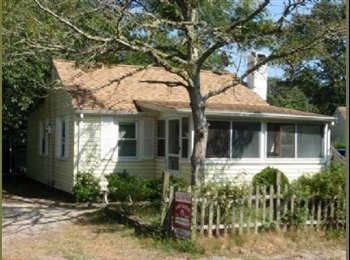 Roommate wanted for 3 months in a Cape Cod cottage