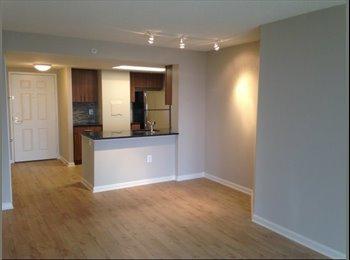 EasyRoommate US - Newly Renovated Unit, Steps Away from the Metro! - Arlington, Arlington - $800