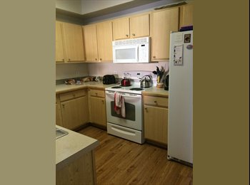 EasyRoommate US - Room for rent in South Austin $531 - South Austin, Austin - $531
