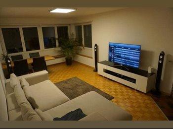 Wunderschöne, helle Wohnung in Wipkingen