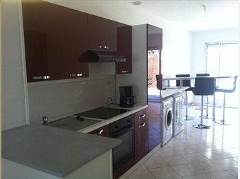 Appartager FR - Colocation, chambre 12 m², grande maison 100 m² - Lille-Sud, Lille - €500