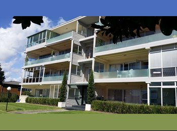 NZ - Mission Bay Beach Apartment - Mission Bay, Auckland - $350