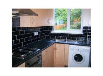 EasyRoommate UK - Harborne Houseshare close to Hospitals & HagleyRd - Harborne, Birmingham - £238