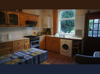AVL NOW  2 NICE dbl   ROOMs  IN CROOKES NR BHILL