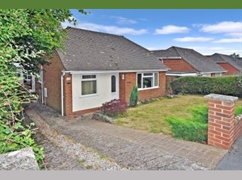 EasyRoommate UK - BEAUTIFUL MODERN HOUSE FOR RESPECTABLE PROFESSIONA - Exeter, Exeter - £380