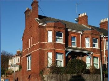 EasyRoommate UK - EXETER -- DOUBLE ROOM IN FAB HOUSE - Exwick, Exeter - £390