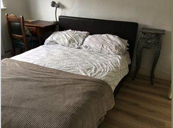 Professional req. for dbl room in E17 £125/wk incl