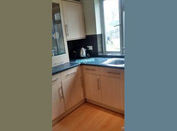 EasyRoommate UK - luxury apartment with friendly people, clean airy - Loughton, London - £434