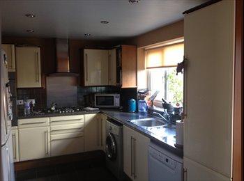 EasyRoommate UK - Spacious single room in Loughton - Loughton, London - £440