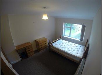 EasyRoommate UK - Houseshare in Harborne for young professional - Harborne, Birmingham - £390