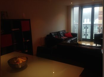 EasyRoommate UK - Quayside, Modern Apartment, Great view - Newcastle City Centre, Newcastle upon Tyne - £500