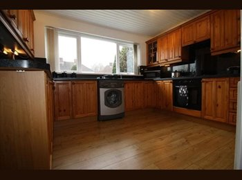 EasyRoommate UK - Lovely double room near Cardiff Met - Whitechurch, Cardiff - £350