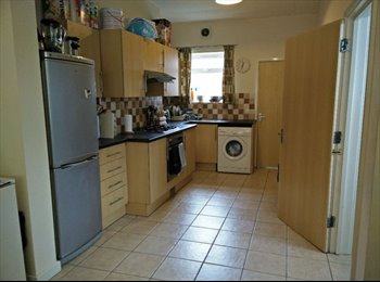 EasyRoommate UK - Two rooms in spacious four bed shared house - Cathays, Cardiff - £275