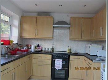 EasyRoommate UK - Large Semi-detached House in selly Oak - Selly Oak, Birmingham - £350