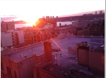 Very large, sunny room with an amaizing view $1300