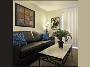 Summer Sublease- uga apartments athens