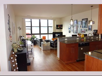 3rd luxury apt, roof-top patio, pets allowed
