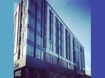 UW-Madison Campus Apartment