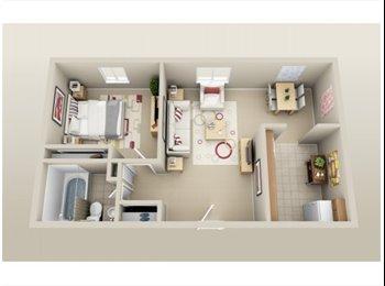EasyRoommate US - 1 bedroom apartment - Ann Arbor, Ann Arbor - $585