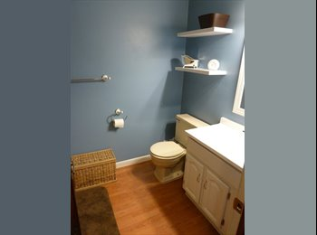 Room for Rent in Finished Basement