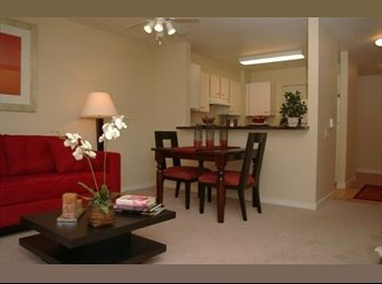 Looking for a roommate! Great Apartment!