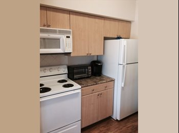 EasyRoommate US - 1 bed 1 bath available - South Congress Ave - $640 - South Austin, Austin - $640