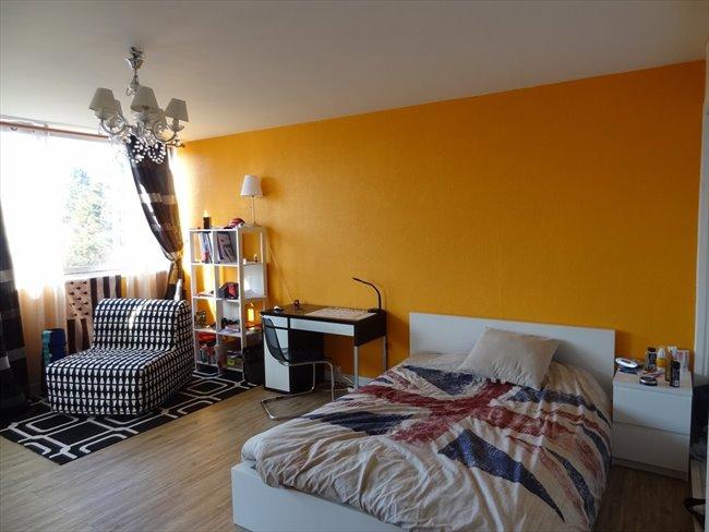 Offre colocation Chambre 25m2 dans appart à Massy. - Massy, Paris - Essonne - Image 1