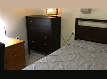 Room to rent available,