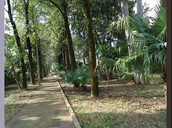 EasyQuarto BR - QUARTO PARA ESTUDANTES OU TRABALHADORES - Foz do Iguaçu, Foz do Iguaçu - R$ 500 Por mês